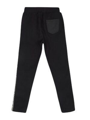 Штани для дівчинки зимові плащівка на утепленні з принтом на боці 29939