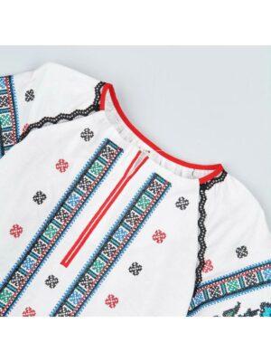 Вишиванка для дівчинки з блакитною вишивкою Борщівка