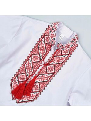 Вишиванка для хлопчика з червоною вишивкою Василько