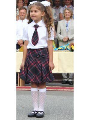 Шкільна спідниця в синьо червону клітку з бантом
