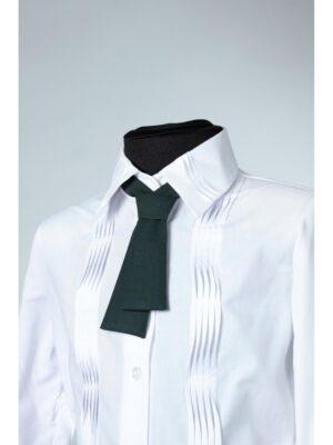Школьный галстук школьный для девочки зеленого цвета